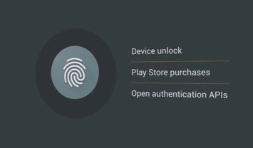 Fingerprint Support