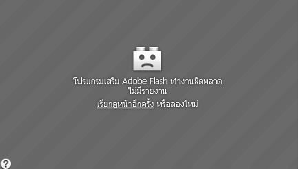 การทำงานผิดพลาดของ Flash