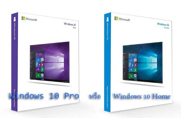 Windows 10 Pro และ Windows 10 Home