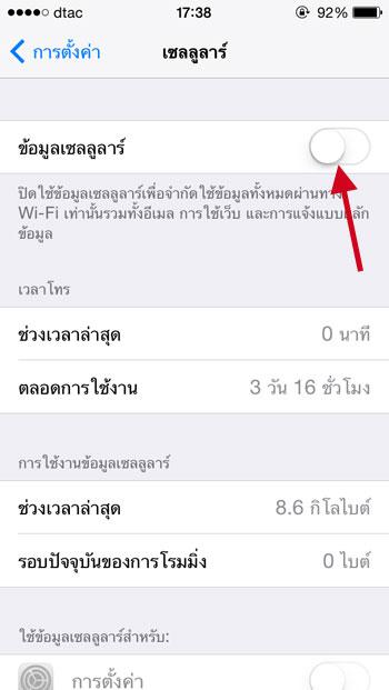 iOS Cellular Data