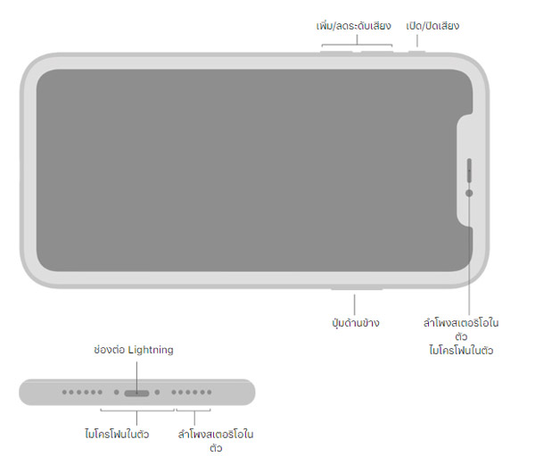 ปุ่มและช่องต่อสายด้านนอก iPhone 11